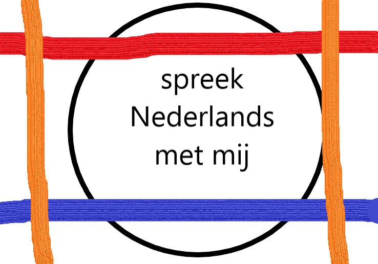 Spreekvaardigheid Nederlands; leer bij Taalnaartaal beter spreken en presenteren in het Nederlands voor NT2 en NT1